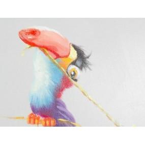 Obraz Tukan