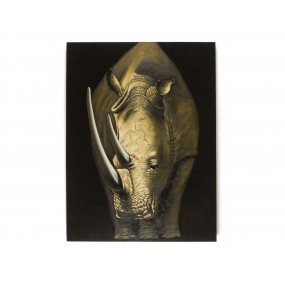 Obraz Nashorn