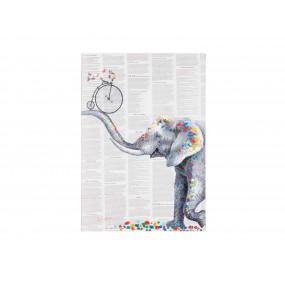 Obraz Elefant